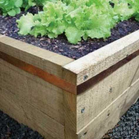 Copper tape around raised beds to keep slugs out