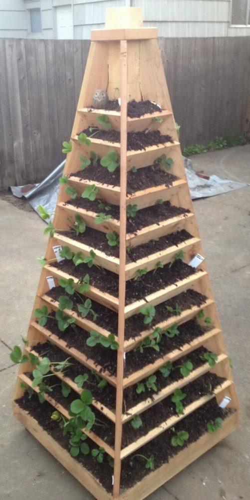 Tall Strawberry Planter